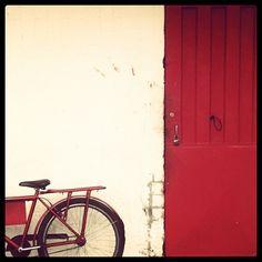 Red (taken by adaniella)