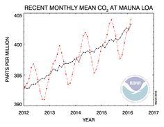 The annual CO2 growth rate rose more in 2015 than scientists have ever seen in a single year.