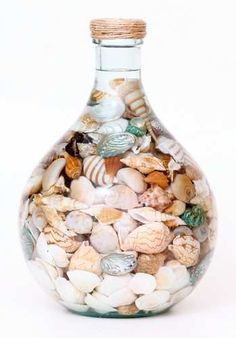 Seashell Display, Seashell Art, Seashell Crafts, Beach Crafts, Seashell Projects, Driftwood Projects, Driftwood Art, Deco Marine, I Need Vitamin Sea