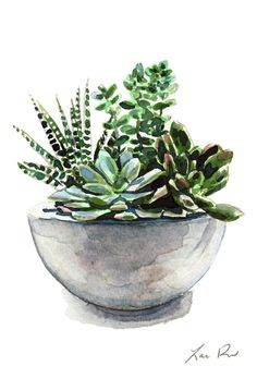 Green Succulent Cactus Arrangement Giclee Print by LauraRowStudio watercolor Succulent Garden Concrete Planter Cactus Art Print Watercolor Painting Wall Decor Botanical Pretty Cute Canvas Housewarming Gift for Her Succulents Drawing, Cactus Drawing, Watercolor Succulents, Hanging Succulents, Garden Drawing, Cactus Art, Succulents Garden, Watercolor Flowers, Cactus Plants