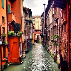 Did you know that Bologna has canals just like Venice? When you're here you need to look for small secret windows that you can open on the street and then when you look through them you see a scene that looks like this - beautiful!