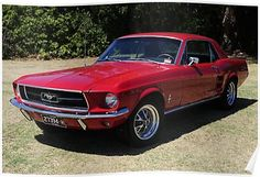 Classic 1967 Ford Mustang- my first car was originally lime gold but my dad painted this color red Ford Classic Cars, Classic Chevy Trucks, My Dream Car, Dream Cars, Best Muscle Cars, Pony Car, Vintage Trucks, Car In The World, Ford Mustang