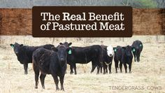 The real benefit of eating and buying pastured meat!