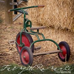Awesome vintage tricycle on Mary Jane's Farm. Antique Toys, Vintage Antiques, Vintage Love, Retro Vintage, Victorian Dolls, Metal Toys, Pedal Cars, Vintage Bicycles, Old Toys