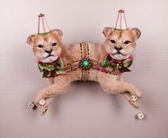 The taxidermy sculptures of Les Deux Garcons...I am strangely attracted to his work.