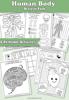 These six free printable Human Body Worksheets contain activities to keep a child entertained while also teaching them everything they need to know about the human body. The human body is so important to learn about! Human Body Science, Human Body Activities, Human Body Unit, Human Body Systems, Science Activities, Science Education, Physical Education, Health Education, The Human Body