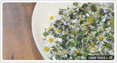 en mai je cuisine les fleurs, recettes, et comestibles