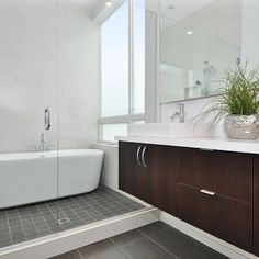Small Master Bath Designs Design, Pictures, Remodel, Decor and Ideas - page 13