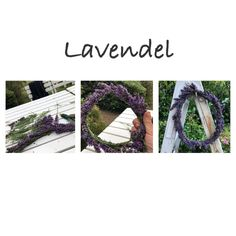 Lavendel fra haven Lavender