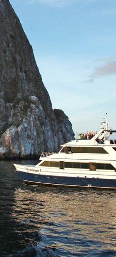 Take a cruise along the #Galapagos Islands.
