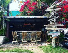 My kinda town������ #bar #florida #keywest #FLKeysLuxury #fl #flawless #drinks #drinking #drinkup #cocktails #delicious #food #foodie #foodandwine #foodporn #foodblogger #foodphotography #foodbeast #foodstagram #foodstyling #fooddiary #foodshare #foodphoto #foodiegram #foodoftheday #yummy #yum #eeeeats #forkyeah http://tipsrazzi.com/ipost/1500440917709119453/?code=BTSoxCig1_d