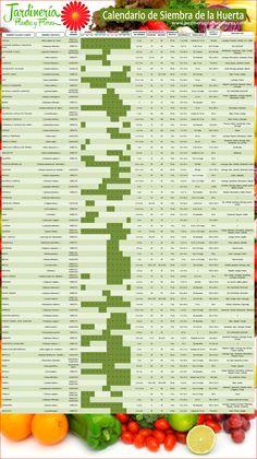 calendario de siembra de hortalizas y aromaticas