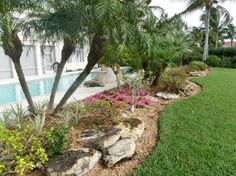 Landscaping Around The Pool.