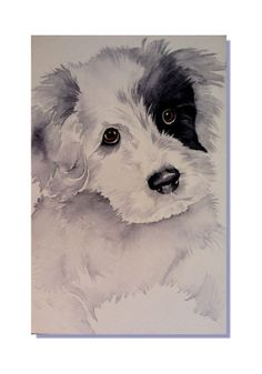 OSWOA  Original Art Puppy Dog Maltese Shihtzu Black White Watercolor Painting