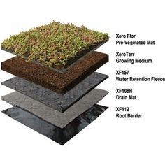 Generic Extensive Green Roof On A Steel Deck