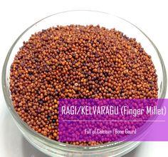 Finger Millet / Mandua / Kelvargu / Ragi