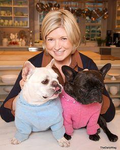 Creating a Safe Home for Pets - Martha Stewart Pets
