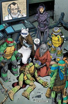 What? A Ninja Turtle Was Just Killed in the Comics! Comic Book Teenage Mutant Ninja Turtles NOOOOOO!