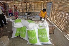 Play trivia to fight world hunger. freerice.com 1 correct answer = 10 grains of rice given to fight hunger worldwide!