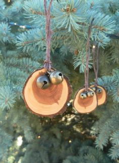 Evergreen and Sleigh Bells- Tree Slice Christmas Ornaments with Brass Jingle Bells