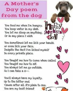 I love this slightly naughty but very apt poem from a dog to his/her human - Annie
