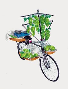 Sameer Kulavoor, The Ghoda Cycle Project Indian Illustration, Illustration Styles, Digital Illustration, Top Paintings, Bike Sketch, India Art, Indian Artist, Cycling Art, Visual Development