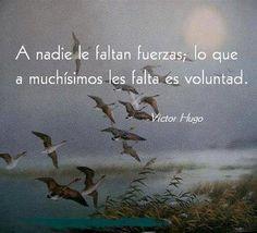 Victor Hugo (motivaciones)