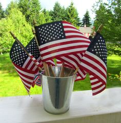 Flag Hunt ! Fun and active 4th of July game for kids.