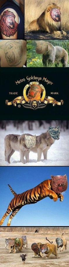 Tattoo fails photoshopped onto real animals - http://www.jokideo.com/