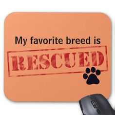 >>>The best place          My Favorite Breed Is Rescued Mouse Pads           My Favorite Breed Is Rescued Mouse Pads we are given they also recommend where is the best to buyHow to          My Favorite Breed Is Rescued Mouse Pads Review from Associated Store with this Deal...Cleck Hot Deals >>> http://www.zazzle.com/my_favorite_breed_is_rescued_mouse_pads-144467599075482140?rf=238627982471231924&zbar=1&tc=terrest