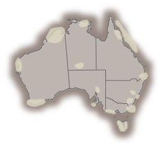 Short films about Australia's iconic landscape Australia Information, World Geography, Social Science, First Grade, Social Studies, Short Films, Tourism, Education, Curriculum