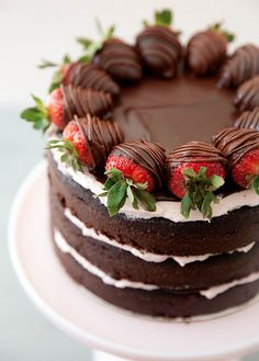 gastrogirl: chocolate covered strawberry layer cake.