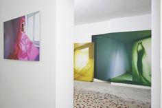 True Colors, Sophie Delaporte exhibition at Galerie Jospeh, Paris.