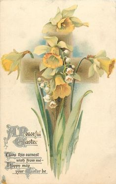 A PEACEFUL EASTER daffodils Daffodil Tattoo, Daffodil Flower, Easter Flowers, Vintage Cards, Vintage Postcards, Spring Images, Vintage Drawing, Postcard Design, Holiday Postcards