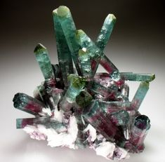 A cluster of Tourmalines, with 'watermelon' colouring at the base of the crystal. The deep red center transitions to a blue-green outer rim, changing to an apple green at the tips of the crystals