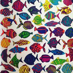 """""""Finally finished! Only took me 2 full 5 hour plane rides! ✈️ #LostOcean #fish #arttherapy #fishies #colour #colourful """""""