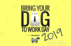 Bring Your Dog To Work Day is back around again this year and is going from strengh to strengh! On Friday the June workplaces and businesses across the UK will welcome our four Your Dog, Bring It On, Events, Activities, Day