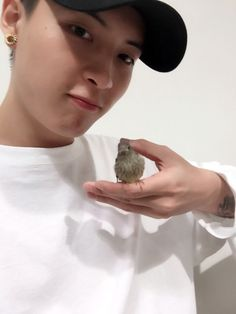 """160820 @madtown_jp twitter update """"#Buffy #Juhyeon Today morning has a visitor who come and visit #MADTOWN 😊 This baby sparrow has come and meet #MADTOWN on this rainy day. Just become as good friend with Ms. Buffy ♡ (trans)"""""""