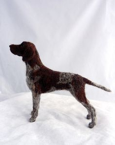 German Shorthaired Pointer 011   by adore62