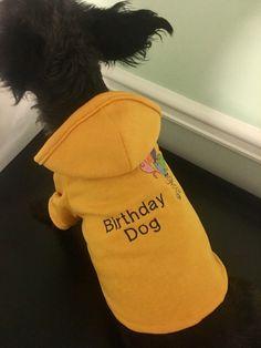 A personal favorite from my Etsy shop https://www.etsy.com/listing/505398089/birthday-dog-hoodie-medium-dog-shirt-dog