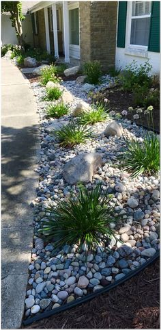 Mixing stone with plants to create a low maintenance foundation planting. Mixing stone with plants to create a low maintenance foundation planting. Outdoor Landscaping, Landscaping Plants, Front Yard Landscaping, Planting Plants, Landscaping Ideas, Backyard Ideas, Garden Plants, Garden Ideas Uk, Easy Garden