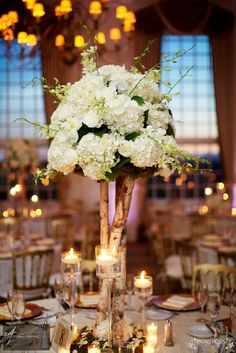 Adam Leffel Productions Reception Couture. A beautiful centerpiece of white hydrangea, white roses, and white dendrobium orchids on a stand of birch logs. Cohen candle sticks and votive on the table. #adamleffelproductions #reception #orchids #white #birch #wedding #candles