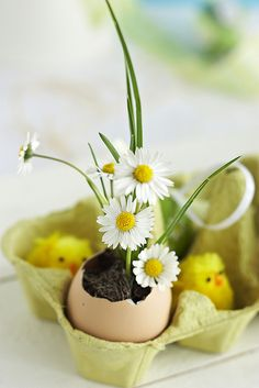 #Easter decoration