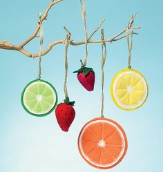 M6572, Fruit