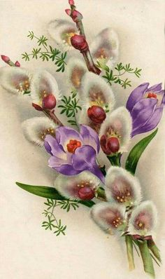 Crocus and Pussy Willow, oh my! This is a beautiful illustration and I never would have thought of putting these two flowers together, but. Vintage Greeting Cards, Vintage Postcards, Vintage Images, Flower Prints, Flower Art, Easter Art, Vintage Easter, Flower Images, Vintage Flowers