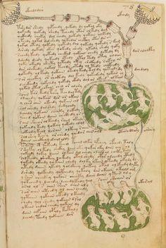 Le manuscrit Voynich Le manuscrit est maintenant propriété de l'Université de Yale et disponible en ligne sur http://highway49.library.yale.edu/.