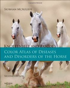 Knottenbelt and Pascoe's Color Atlas of Diseases and Disorders of the Horse by Siobhan Brid McAuliffe Hardcover) for sale online Bull Terrier For Sale, Mini Bull Terriers, Large Animal Vet, Large Animals, Horse Anatomy, Pet Vet, Horse Books, Vet Clinics, Veterinary Medicine