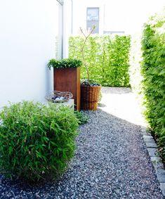 Outdoor Spaces, Outdoor Living, Backyard, Patio, Garden Inspiration, Container Gardening, Entrance, Sidewalk, Plants