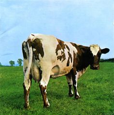 Pink Floyd album cover by Hipgnosis Storm Thorgerson (Atom Heart Mother, Pink Floyd Album Covers, Pink Floyd Albums, Rock Album Covers, Classic Album Covers, Music Album Covers, Pink Floyd Cover, Storm Thorgerson, Atom Heart Mother, Led Zeppelin