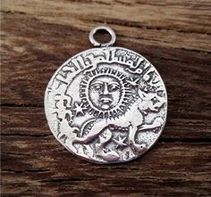 Sun and Lion Coin Pendant and Charm in by VDIJewelryFindings